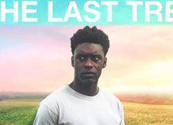 THE LAST TREE (2019)