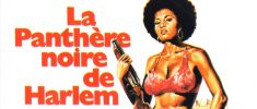 COFFY - LA PANTHÈRE NOIRE DE HARLEM (1973)