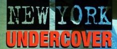 New York Undercover (1994–1999) Série Tv