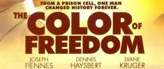 the COLOR of FREEDOM (2007)