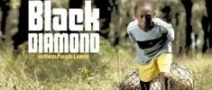Black Diamond (2010)